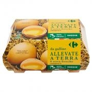 Carrefour Fresche da Galline Allevate a Terra Categoria a Medie